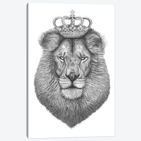 The Lion King Canvas Print #VAK65} by Valeriya Korenkova Canvas Artwork