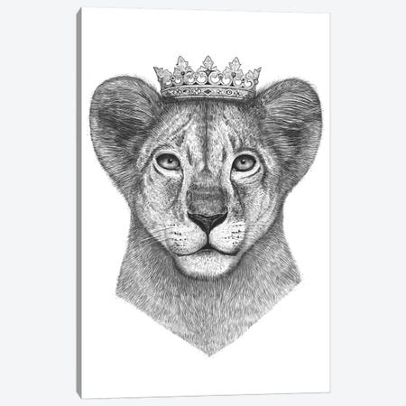 The Lion Prince Canvas Print #VAK66} by Valeriya Korenkova Canvas Artwork