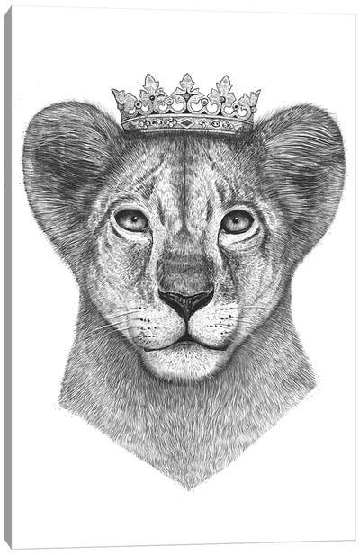 The Lion Prince Canvas Art Print