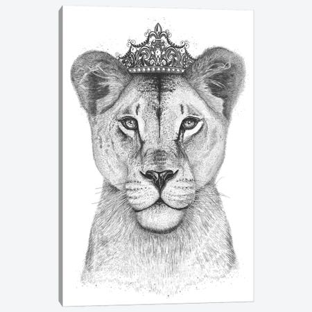 The Lioness Queen Canvas Print #VAK67} by Valeriya Korenkova Canvas Wall Art