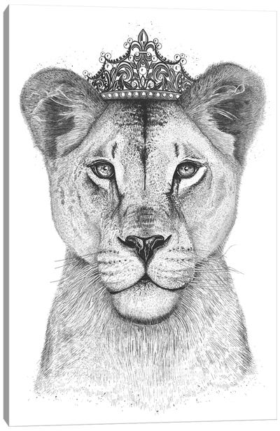 The Lioness Queen Canvas Art Print