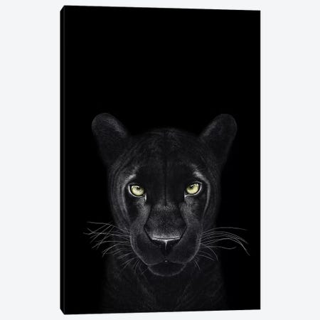 The Panther Girl On Black Canvas Print #VAK68} by Valeriya Korenkova Canvas Print