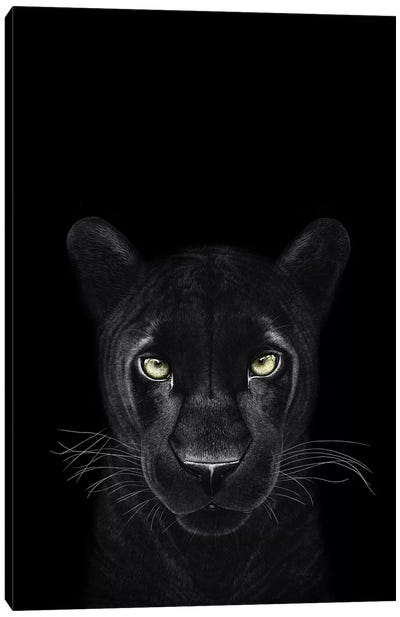 The Panther Girl On Black Canvas Art Print