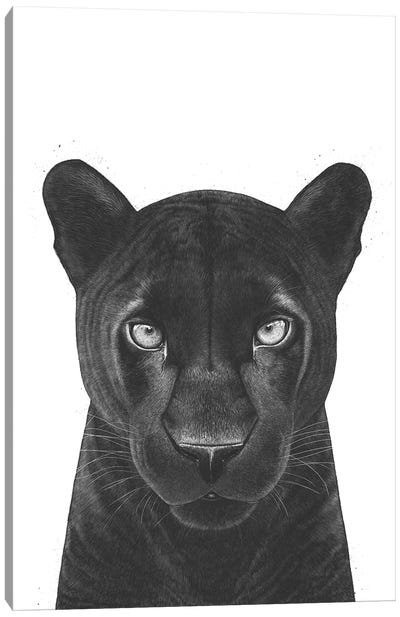 The Panther Girl Canvas Art Print