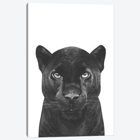 The Panther Canvas Print #VAK71} by Valeriya Korenkova Canvas Wall Art