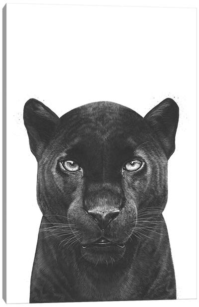 The Panther Canvas Art Print