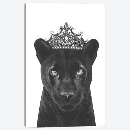 The Queen Panther Canvas Print #VAK74} by Valeriya Korenkova Canvas Art Print