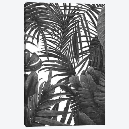 Tropical Jungle Canvas Print #VAK77} by Valeriya Korenkova Art Print