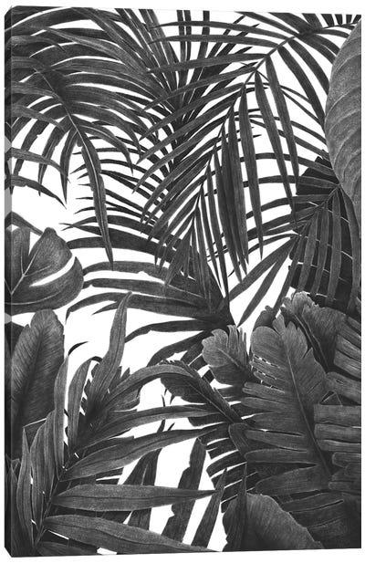 Tropical Jungle Canvas Art Print