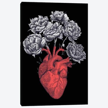 Heart With Peonies On Black 3-Piece Canvas #VAK98} by Valeriya Korenkova Canvas Wall Art