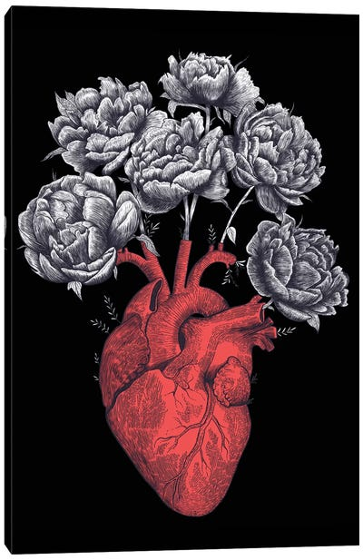 Heart With Peonies On Black Canvas Art Print