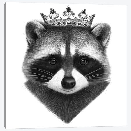 King Raccoon Canvas Print #VAK9} by Valeriya Korenkova Canvas Artwork