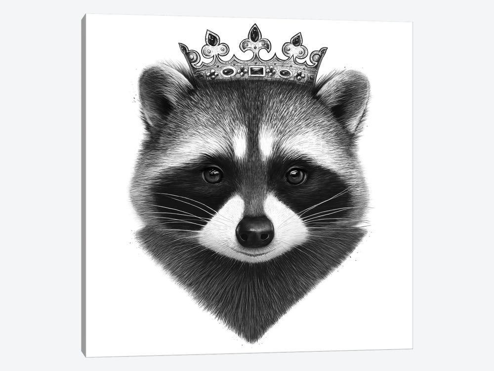 King Raccoon by Valeriya Korenkova 1-piece Canvas Artwork