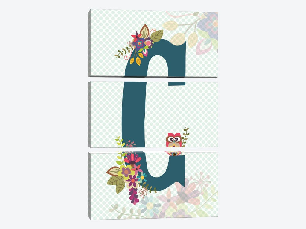 Floral Alphabet Series: C by Valentina Harper 3-piece Canvas Art