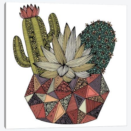Cactus Canvas Print #VAL480} by Valentina Harper Art Print