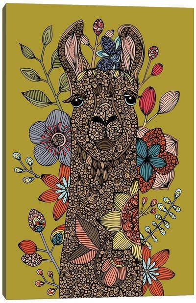 Llama I Canvas Art Print