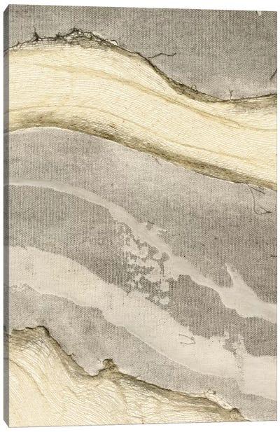 Flux IV Canvas Art Print