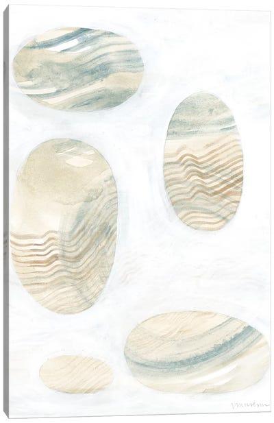 Neutral River Rocks III Canvas Art Print