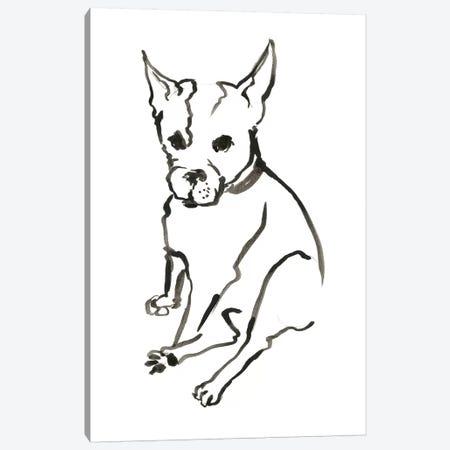 WAG: The Dog VIII Canvas Print #VBI10} by Vanessa Binder Canvas Artwork