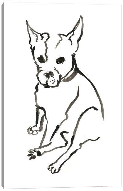 WAG: The Dog VIII Canvas Art Print