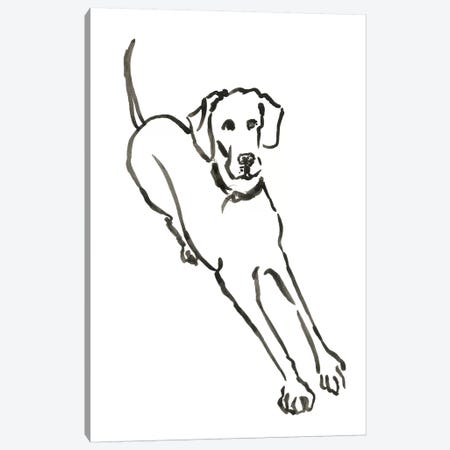 WAG: The Dog II Canvas Print #VBI4} by Vanessa Binder Canvas Art