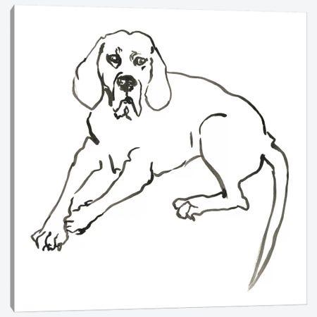 WAG: The Dog III Canvas Print #VBI5} by Vanessa Binder Canvas Wall Art