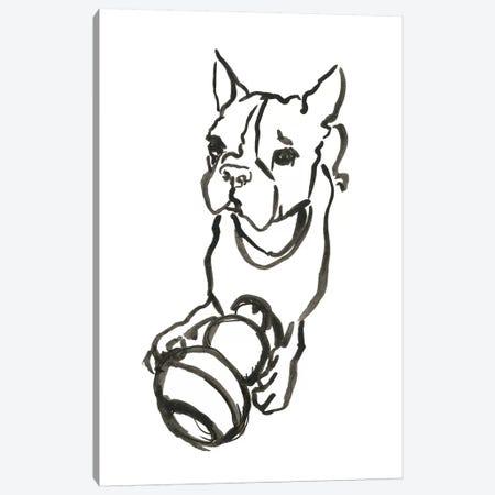 WAG: The Dog IX Canvas Print #VBI6} by Vanessa Binder Canvas Wall Art