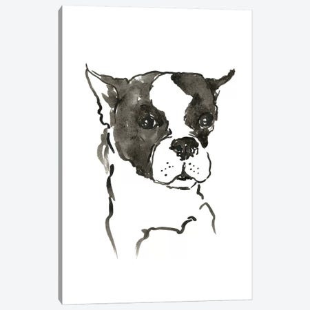 WAG: The Dog V Canvas Print #VBI7} by Vanessa Binder Canvas Artwork