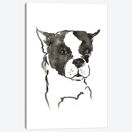 WAG: The Dog V Canvas Print #VBI7} by Vanessa Binder Canvas Artwork