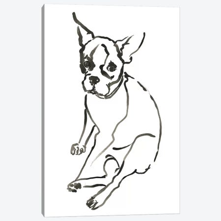 WAG: The Dog VI Canvas Print #VBI8} by Vanessa Binder Canvas Print