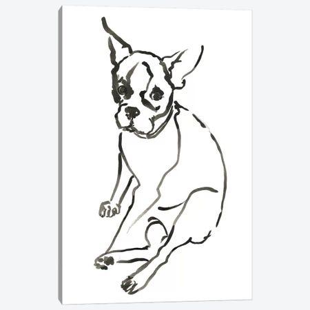 WAG: The Dog VI Canvas Print #VBI8} by Vanessa Binder Canvas Print
