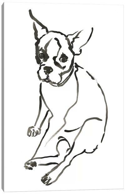 WAG: The Dog VI Canvas Art Print