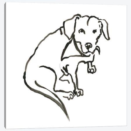 WAG: The Dog VII Canvas Print #VBI9} by Vanessa Binder Canvas Print