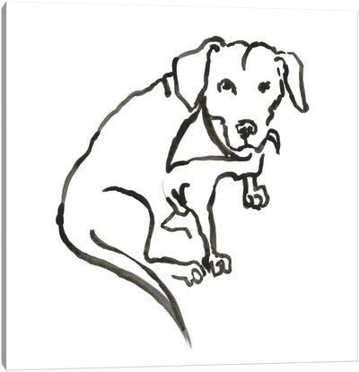 WAG: The Dog VII Canvas Art Print