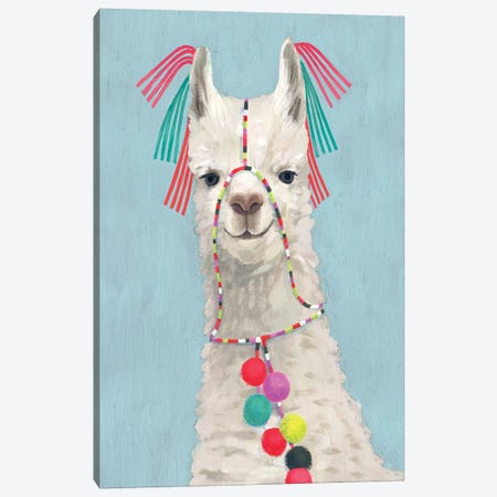 Adorned Llama II Canvas Print #VBO10} by Victoria Borges Canvas Artwork