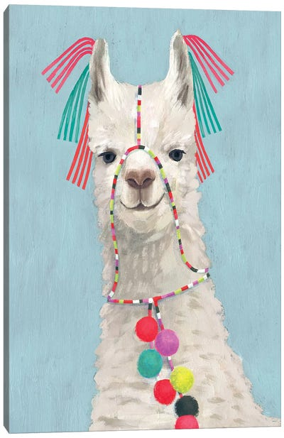 Adorned Llama II Canvas Art Print
