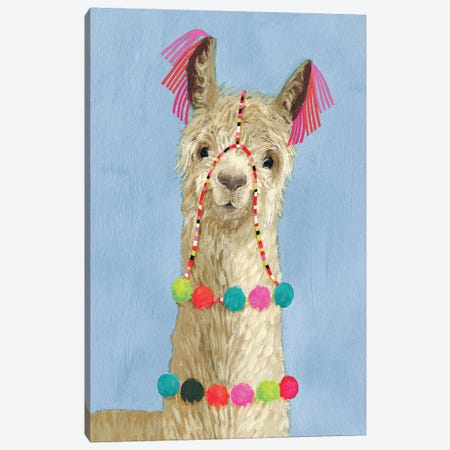 Adorned Llama III Canvas Print #VBO11} by Victoria Borges Canvas Artwork