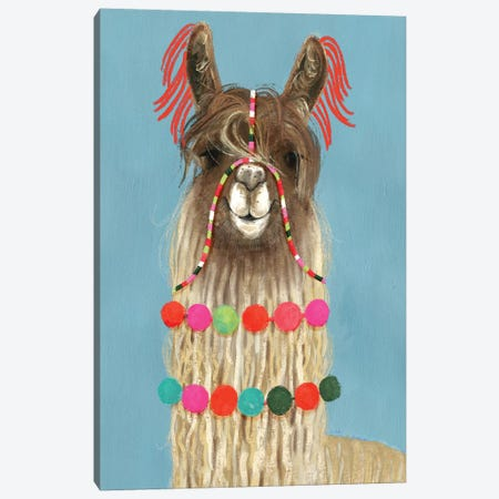 Adorned Llama IV Canvas Print #VBO12} by Victoria Borges Canvas Art