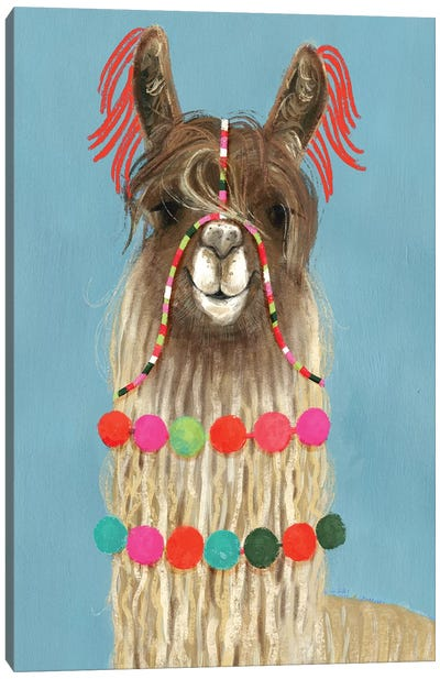 Adorned Llama IV Canvas Art Print
