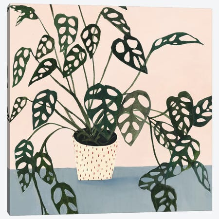 Houseplant I Canvas Print #VBO139} by Victoria Borges Art Print