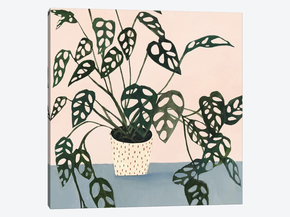 Houseplant I by Victoria Borges 1-piece Canvas Wall Art