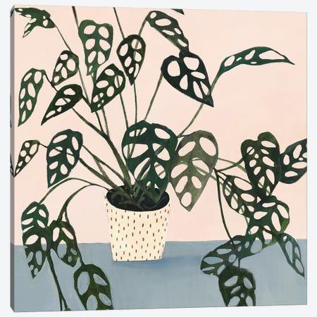 Houseplant I Canvas Print #VBO139} by Victoria Borges Art Print