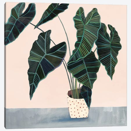 Houseplant II Canvas Print #VBO140} by Victoria Borges Canvas Art