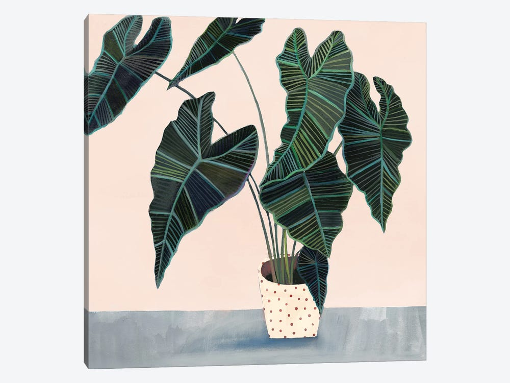 Houseplant II by Victoria Borges 1-piece Canvas Wall Art