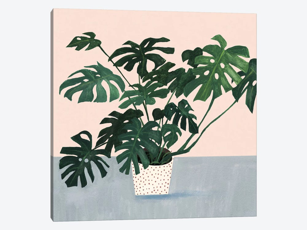 Houseplant III by Victoria Borges 1-piece Canvas Art Print