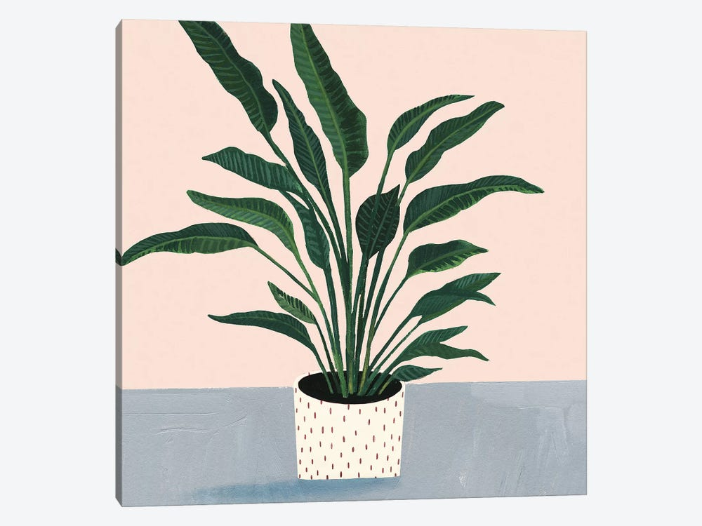 Houseplant IV 1-piece Canvas Wall Art
