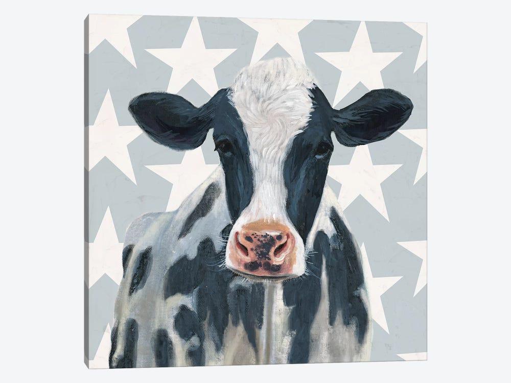 Patriotic Farm II by Victoria Borges 1-piece Canvas Art Print