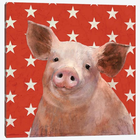 Patriotic Farm III 3-Piece Canvas #VBO159} by Victoria Borges Art Print