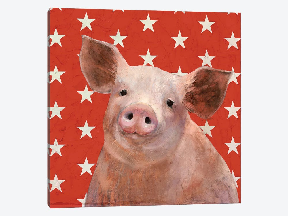 Patriotic Farm III by Victoria Borges 1-piece Canvas Wall Art