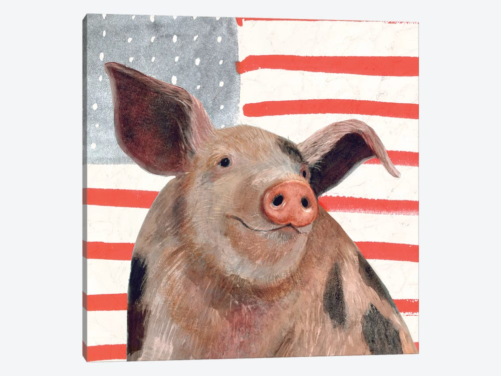 Patriotic Farm IV by Victoria Borges 1-piece Canvas Art
